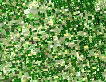 Tarım Alanları